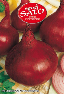 Red Onion sel.Rex 39X