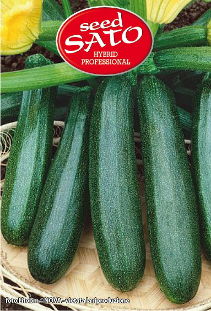 Ibis courgettes hybride F1