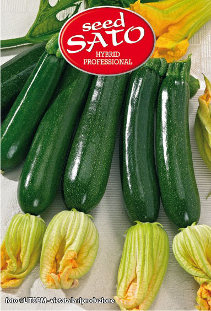 President courgettes hybride F1