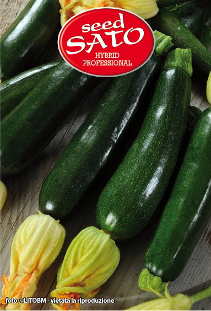 XP020 courgettes hybride F1