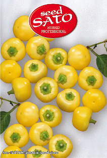 Yellow Hot Pepper F1 (spicy)