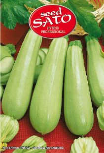 Top Kapi courgettes hybride F1